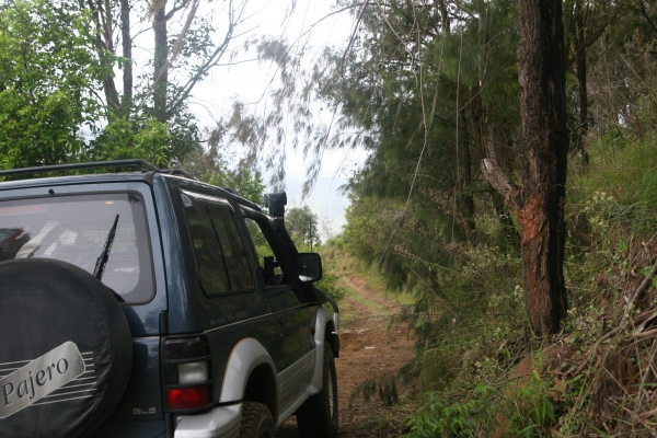 4wd Trip to Rathdowney & Mt Barney National Park