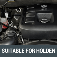 Filters Suitable for Holden